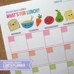 lunchplanwkdyex1